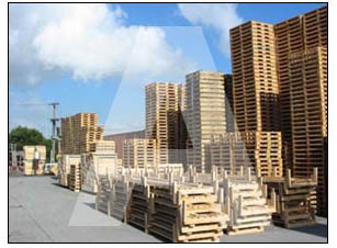 Recondition Wood Pallets & Skids, reconditioned pallets